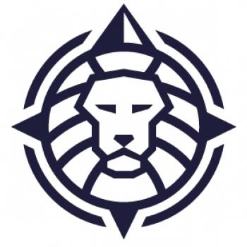 LIONS INVESTORS